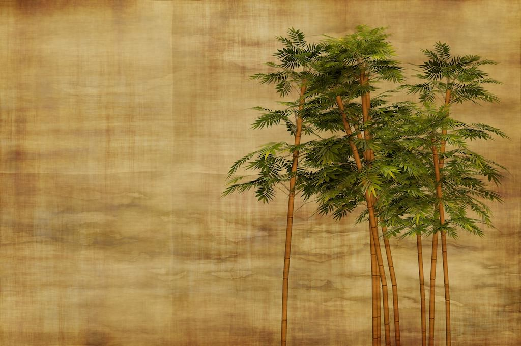 bamboo-2118470_1920.jpg